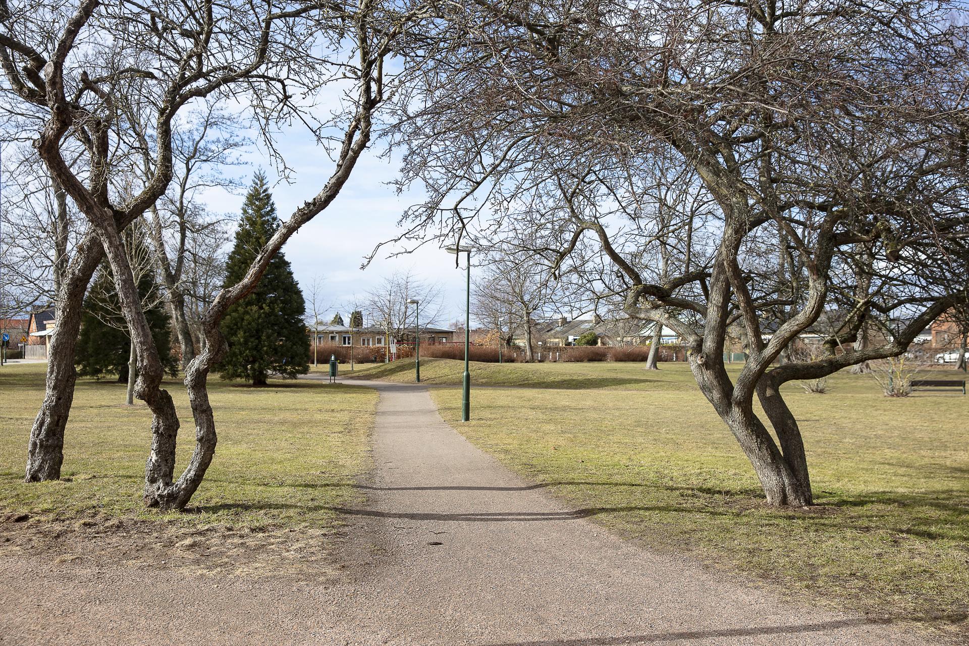Vanåsparken som närmsta granne